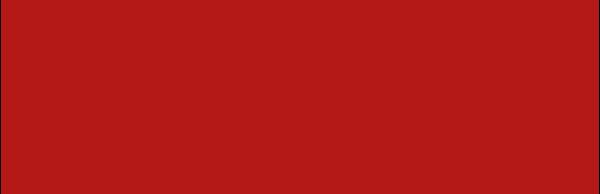 Camerata Bardi Vocal Academy logo