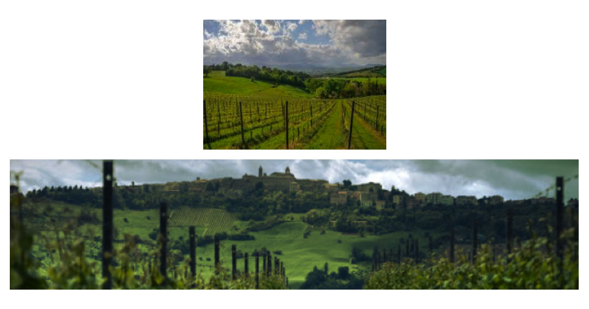 The landscapes of Verdicchio di Matelica